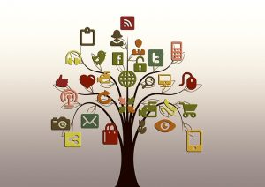 business social media channels Perth